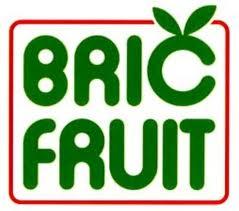 12bricfruit